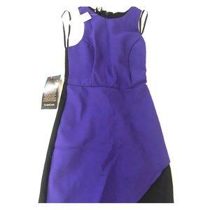 Bebe Dress